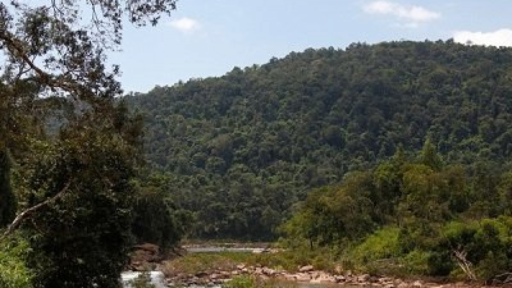 Cardamom Mountains in Cambodia