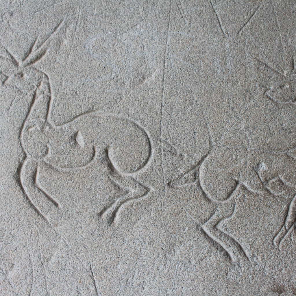 Deer graffiti Angkor Wat