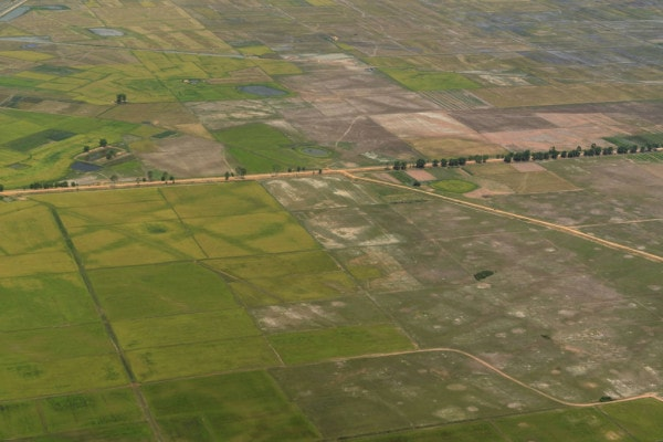 Grid of former Capital of Angkor in rice paddies