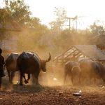 pailin western cambodia