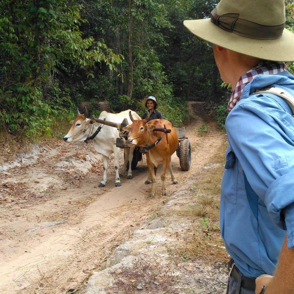 Shaun Mackay Archaeologist in old angkor wat complex